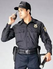 Blue Force Security Group(panipat)