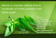 STEVIA CONTRACT FARMING.CONT-09256001700, 09256004300
