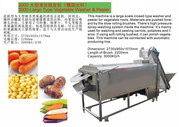 carrot dicing shredding machine ginger slicing equipment Razorfish