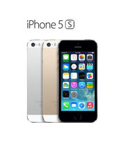 Apple iPhone 5S  (Silver-66664)