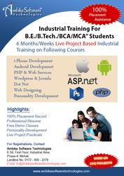 100% jobs in Web development in 6 week training