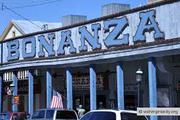 Bonanza Online: Make Money. Not Mistakes(13, 14, 22