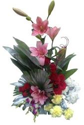 Send Valentine 2016 flowers to Jalandhar