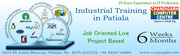 Six Weeks Industrial Training in Patiala