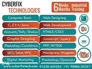 Industrial Training in web designing and development
