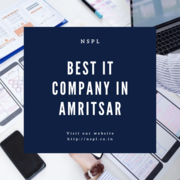 Best IT Company in Amritsar   Global IT Services